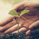 save4print-sostenibilidad-plataforma-mps